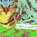 Siphano13